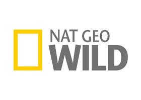 Nat Geo Mumbai Graphic Designer